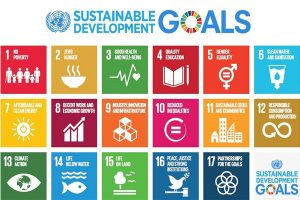 17 Goals towards Sustainable Development and Transformation