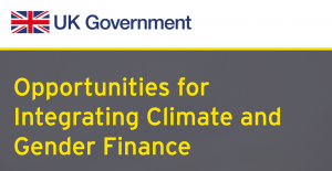 Opportunities for Integrating Climate and Gender Finance